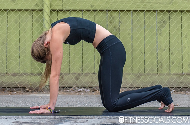 Marjariasana yoga pose with hands flat on mat, knees and toes on mat and back rounded