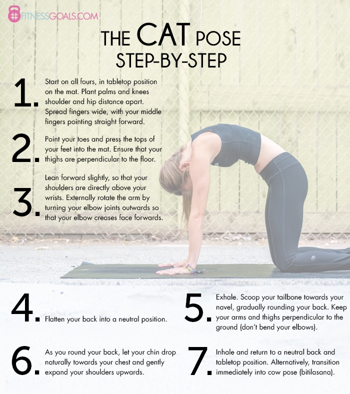 Marjariasana yoga pose step-by-step instructional guide describes how to correctly perform the yoga pose