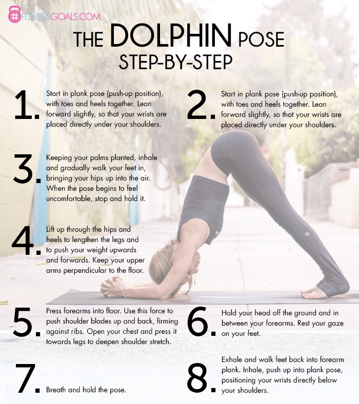 Dolphin Yoga Pose Photos And Video Tips For Beginners