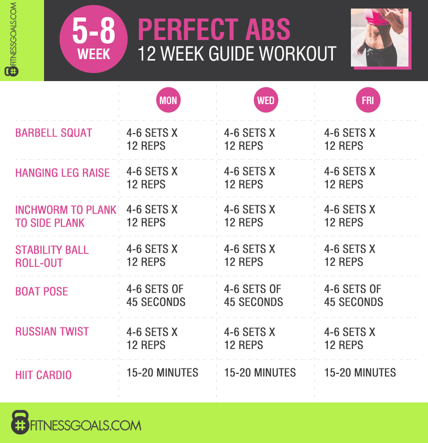 perfect abs weeks 5-8