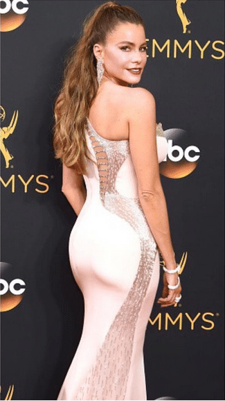 Sofia Vergara Women with nice butts