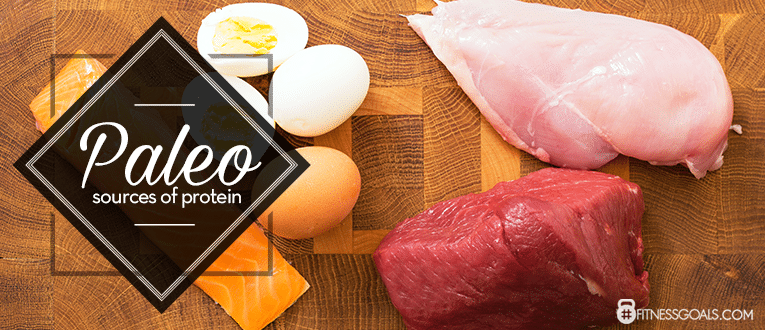 Paleo Sources of Protein