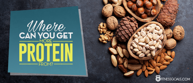 Where Can You Get More Protein From?