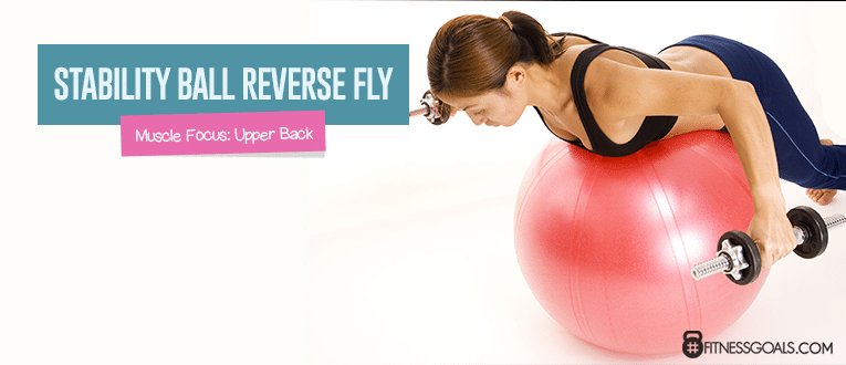 Stability Ball Reverse Fly