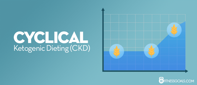 Cyclical Ketogenic Dieting (CKD)